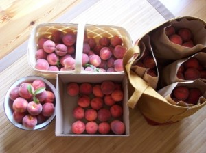 A bushel of peaches