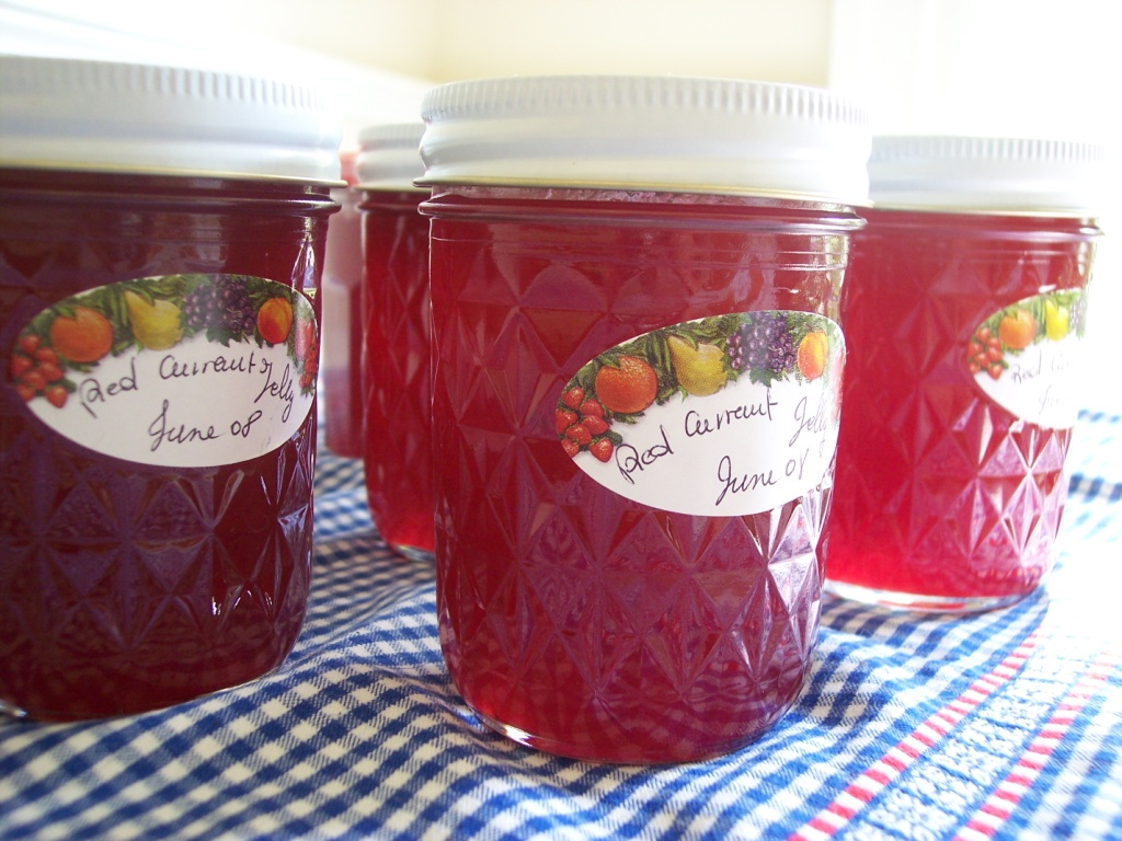 ... red currant jam recipes dishmaps crosse blackwell red currant jelly 12