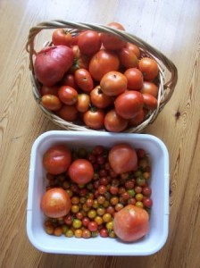 Baskets of Tomatoes by S Rowand