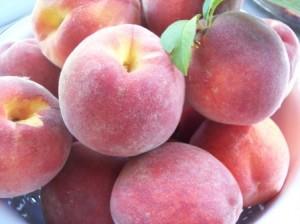 Ripe Yellow Peaches