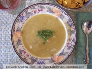 A bowl of Tomatillo Chicken Soup