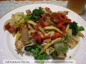 A plate of Fall Rainbow Stir-Fry