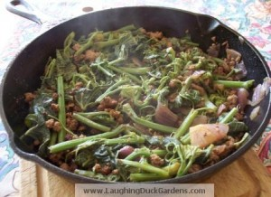 Chayote shoots with pork