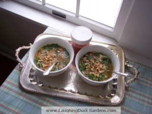 vietname-inspired-rice-chicken-soup-001