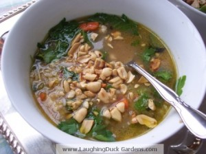vietname-inspired-rice-chicken-soup-002