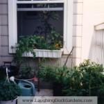 balcony-garden-2