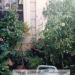 balcony-garden-4