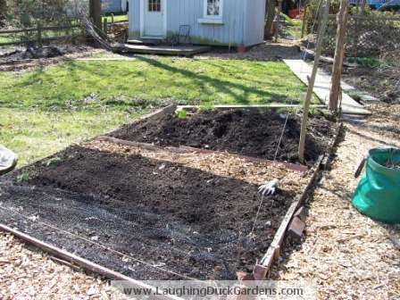 making-a-garden-bed-march-04