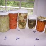 food-preservation-001