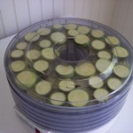 food-preservation-zucchini-drying-002