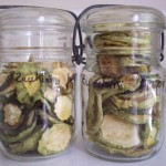 food-preservation-zucchini-drying-003