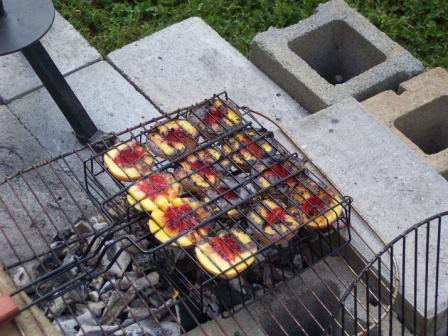 lamb-roast-2009-09-05-26