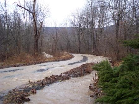road-2010-01-25-908am