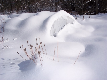 hoophouse-under-snow-2010-02-1381