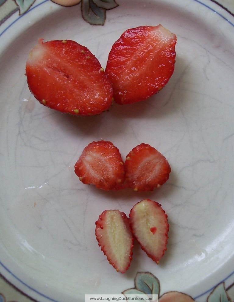 cut up strawberries