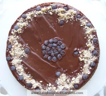 cake-reine-de-saba-2010-04-001
