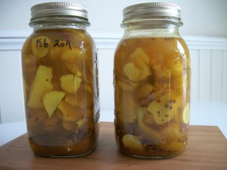 sunroot-pickled-2011-02-007