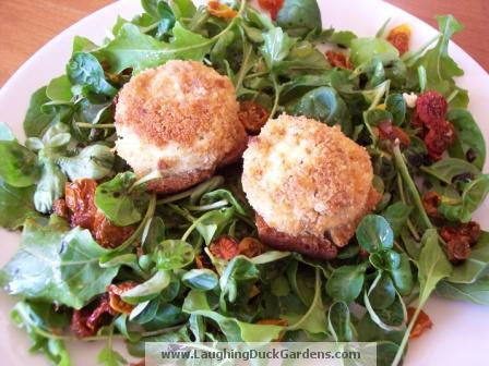 goat-cheese-baked-w-salad-3