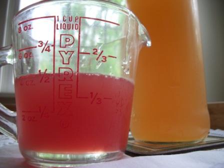 Red Rhubarb & Green Rhubarb Syrup