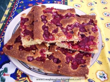 cherry slab pie sour cherry streusel pie sour cherry americano sour ...