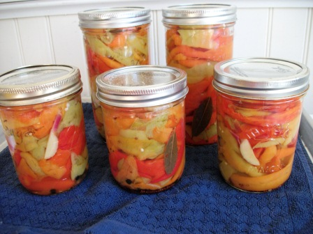 Pickled Frigitello peppers with garlic and fresh bay
