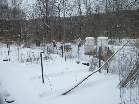 bee hives in snow March 3, 2014
