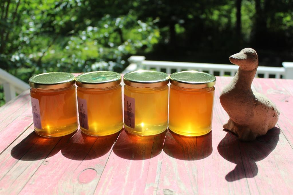 Honey extracted during June 2017, batches A-D.