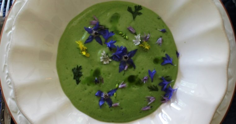 Chilled Sorrel Soup